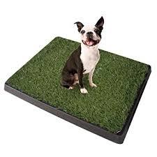 Pet potty cama ecológica para tu cachor@