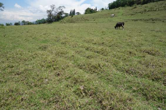 En amaguaña vendo terreno