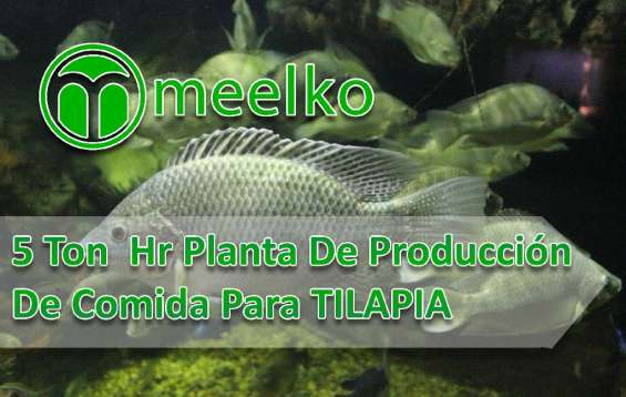 5 ton hr planta de producción de comida para tilapia meelko