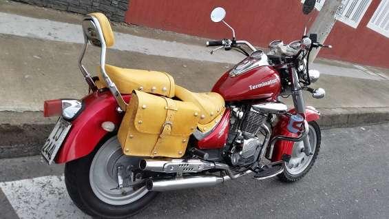 250cc moto1 terminator año 2006