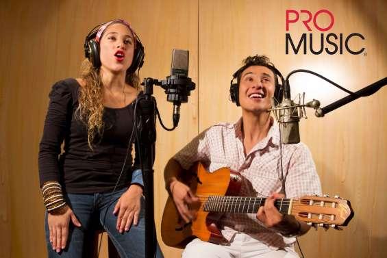 Músicos y cantantes profesionales