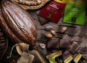 Vendedor de chocolateria