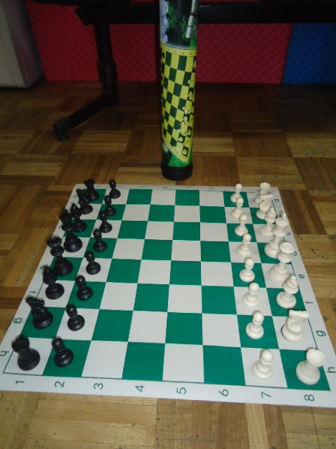 Juego enrollables de ajedrez importado